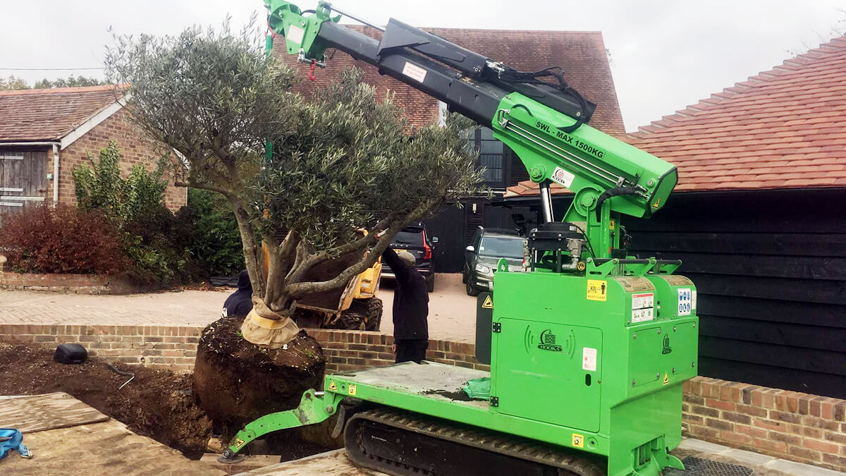 Hooka mini tracked crawler crane lifting and moving large rootball tree into position the perfect tools for the job